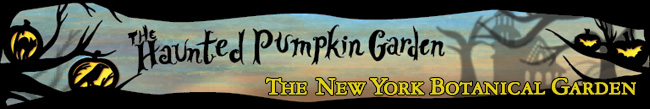0911-Haunted-Pumpkin-Header-650x100.jpg